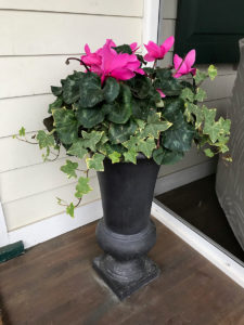 urn with plantings and pink flowers trout lily garden design bedford ny