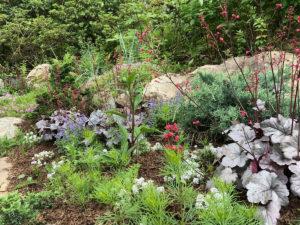 pollinator garden in rock garden trout lily garden design bedford hills ny