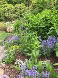 pollinator garden by walkway trout lily garden design pleasantville ny