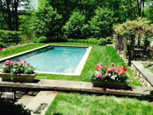 planters with flowers by swimming pool trout lily garden design westchester ny
