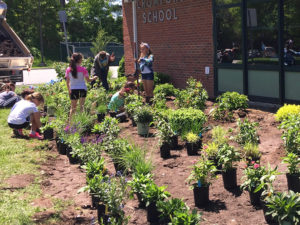 children planting flowers at a school trout lily garden design bedford hills ny