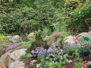 landscaped residential rock garden tiered public garden trout lily garden design bedford hills westchester ny