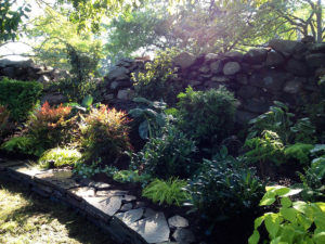 green plantings along rock wall tiered public garden trout lily garden design old greenwich ct