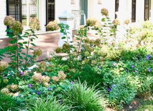 english garden along a veranda tiered public garden trout lily garden design chappaqua westchester ny