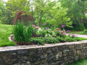 manicured garden by stone wall tiered public garden trout lily garden design bedford hills westchester ny