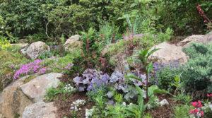 landscaped residential rock garden tiered public garden trout lily garden design pound ridge westchester ny